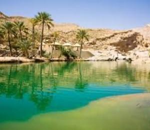 I Domingo da Quaresma: Mc 1,12-15 - Entre o paraíso e o deserto