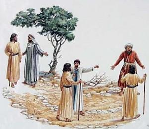 XXV Domingo Tempo Comum: Mt 20,1-16a - A bondade de Deus: a recompensa antecipada
